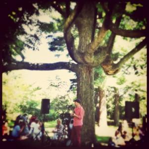 arlington tree